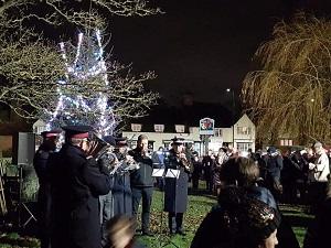 Danbury Christmas Tree 2019