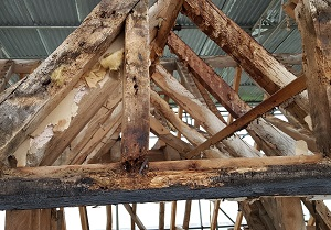 Grade 2 Listed Barn Conversion timber truss repair