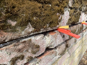 Wall Repair and Strengthening