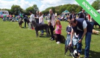 Little Baddow Festival - dog show, fate, fete, September 2021